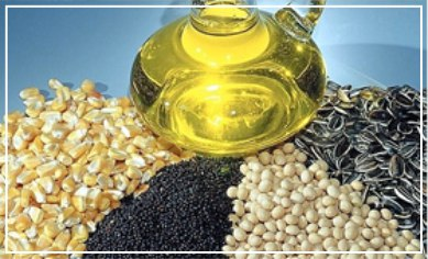 Grain, oil-plant and seed oil